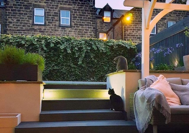 The back garden - the stone steps and patio have child-friendly decking and the pergola came in kit form from Amazon.