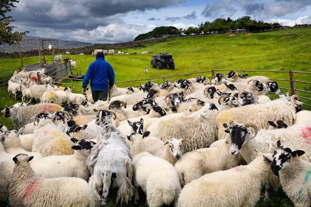 What will be the impact of Brexit on farming?