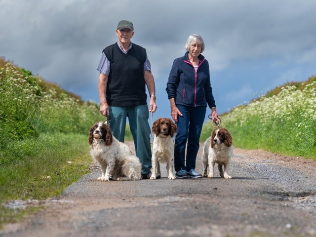 Keith and Liz Fetches have been reunited with their springer spaniels