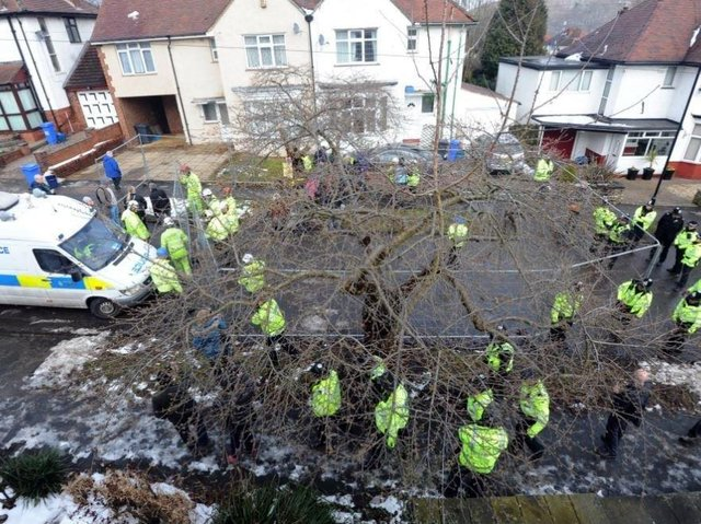 Operation Quito in 2018 saw dozens of police officers sent out to support Sheffield Council's tree-felling operations as protests grew. Picture: Scott Merrylees.