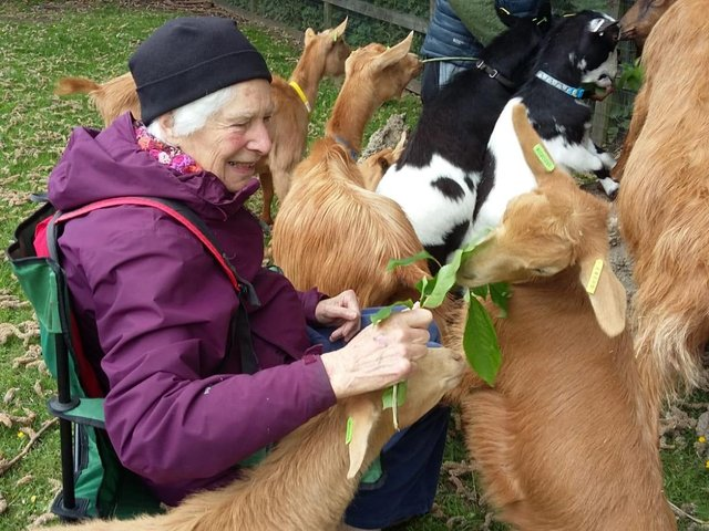 Pictured Janet Griffiths, a dementia sufferer who has benefited from animal therapy at Heeley City Farm, in Sheffield. Photo credit: Submitted picture