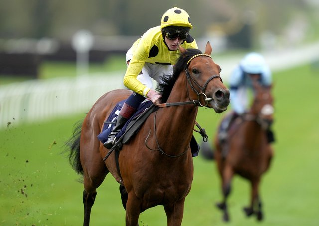 Trial winner: Third Realm ridden by jockey David Egan win the Novibet Derby Trial Stakes at Lingfield Park. (Photo by John Walton - Pool/Getty Images)