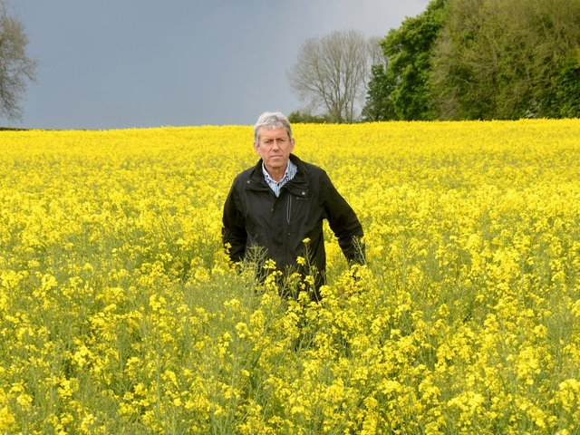 Mark grows oilseed rape