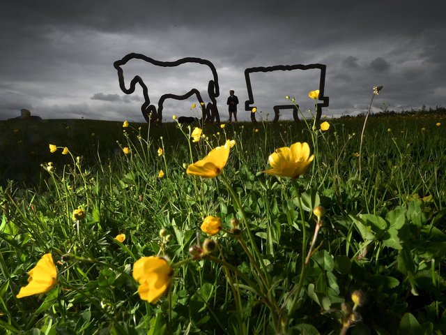 The sculpture on the old Kiveton Park Colliery, Kiveton Community Woodland, South Yorkshire. Picture by Simon Hulme