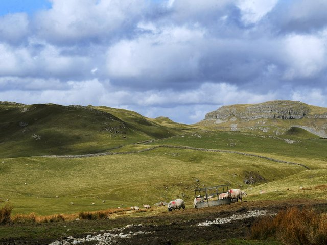 Some 48 per cent of the routes are in the North York Moors, and 31 per cent in the Dales