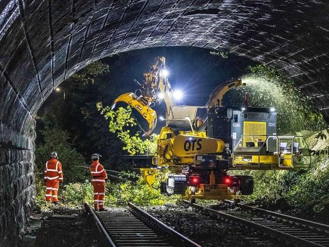 Renew workers clear fallen branches on a railway line