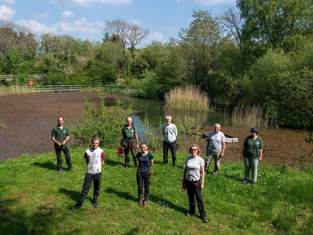 Foxglove Covert has been sustained through 65,000 hours of volunteer labour over the past four years alone