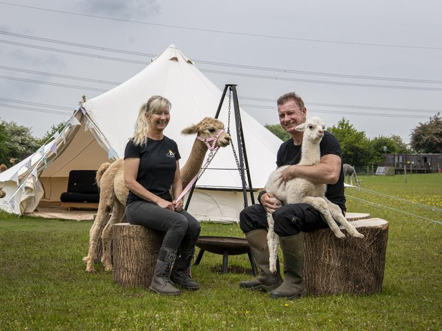 Dean and Karen Pratt with two-week-old alpacas Jackie and mum Abby by the new glamping pods at Tickhill Alpacas at Sunny Acres in Tickhill, South Yorkshire.