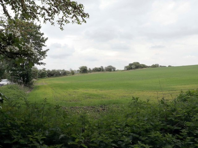 The site of the proposed warehouse