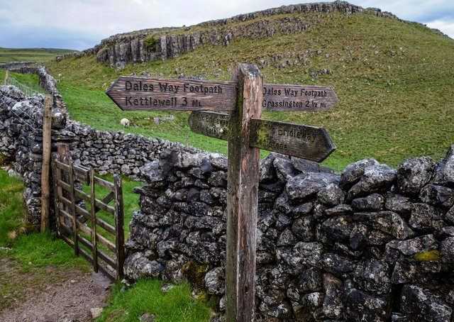 The Dales Way long distance footpath between Kettlewell and Grassington at the top of Conistone Dib in the Upper Wharfedale Valley towards Kilnsey Moor. Photo: Tony Johnson.