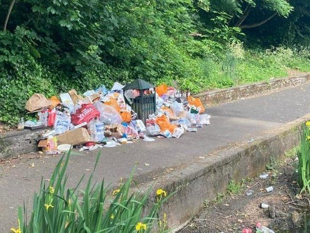 A mound of litter at Crookes Valley Park