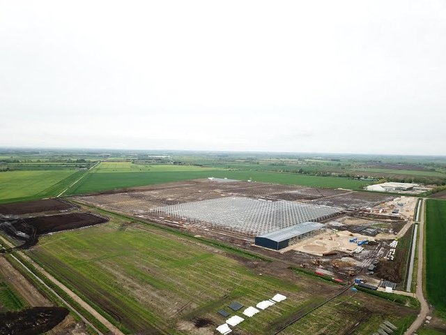 Greencoat Capital's large-scale £85m greenhouse near Ely, Cambridgeshire, will be one of the largest built greenhouses in the UK