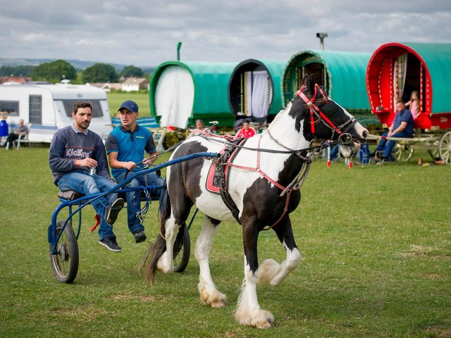 Two men take a horse and cart ride around the fair in 2015