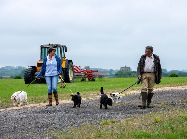 The boarding kennels is the most successful strand of diversification