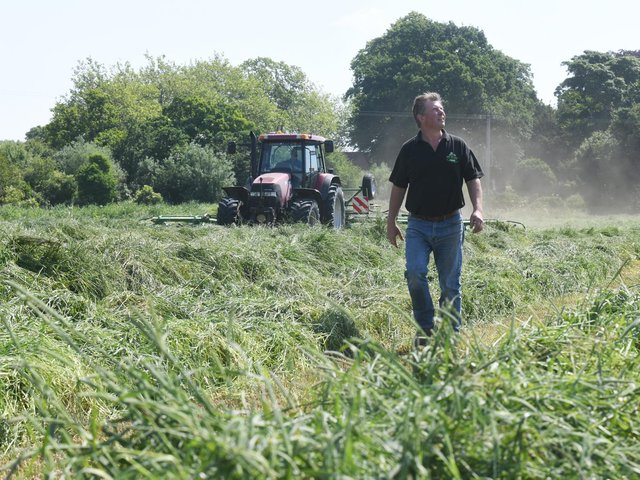 Ian Burrows grows Timothy grass to produce healthy haylage for the small pets market