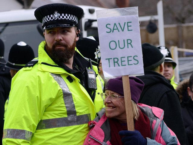 A protester and a police officer at a Sheffield tree-felling site in 2018. Picture: Scott Merrylees