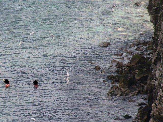 Two kayakers were spotted venturing too close to the base of the cliffs.