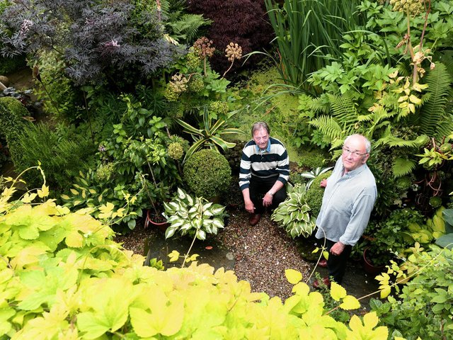 """The garden was a """"blank canvas"""" when the couple bought Cobble Cottage"""