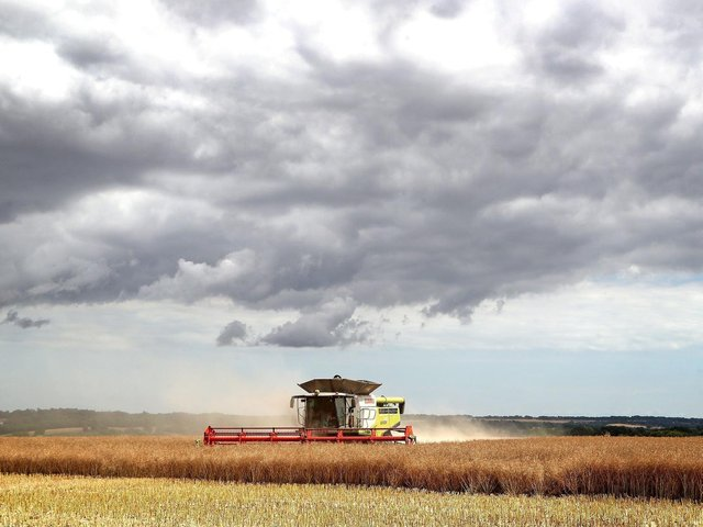 A combine harvester harvesting a rapeseed field. Picture: Gareth Fuller/PA Wire.