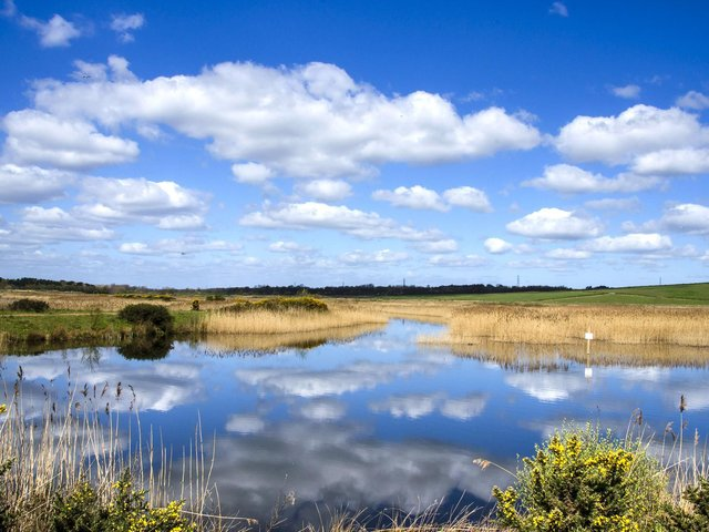 St Aidan's, owned and run by the RSPB, is a popular wild swimming spot although there are no lifeguards manning the area. Photo: SWNS/Ross Parry