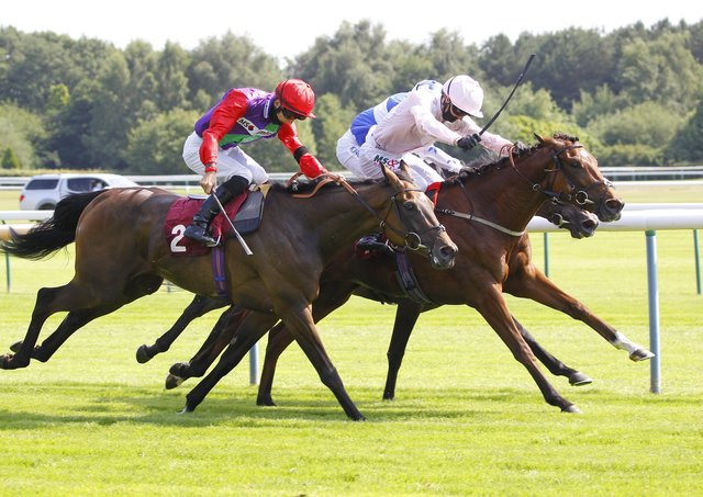 Staying at home: Strait Of Hormuz [pale colours] wins at Haydock last season. Trainer Jedd O'Keefe is looking at races in Yorkshire for his horse after a good run int he John Smith's Cup. (Photo by Steve Davies/Pool via Getty Images)