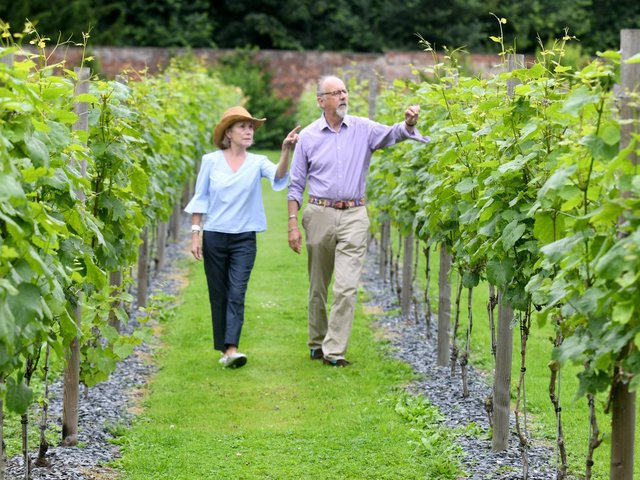 The Fitzalan-Howards own the walled vineyard at Carlton Towers, near Selby