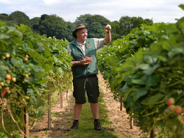 Rory Kemp, owner of Kemp Farms in Horsforth. Picture : Jonathan Gawthorpe